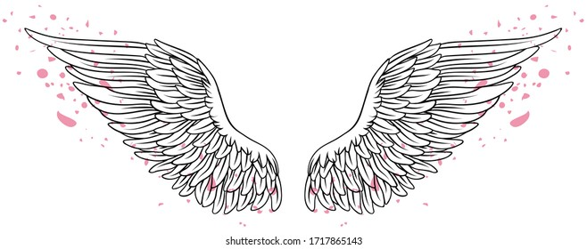 Beautiful black and white wings with pink petals, hand drawn vector