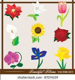 Beautiful Blooms - Floral Vector Set