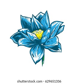 Beautiful blue flower. Gentle lotus on a white background. Lily with pink petals. Good vector element. It can be used for printing on t-shirts, postcards, or used as ideas for tattoos.