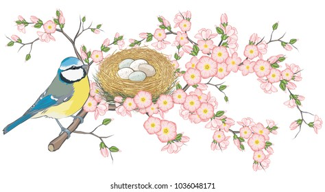 Beautiful Blue Tit Bird on pink flower blossom branch Happy Mother/'s Day card