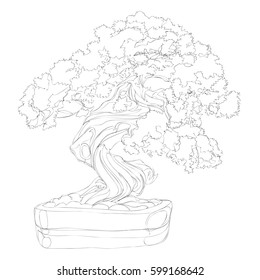 beautiful bonsai traditional line art continuous line drawing