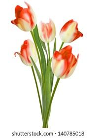 Beautiful bouquet of tulips on a white background. And also includes EPS10 vector
