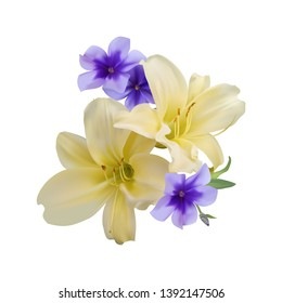Beautiful bouquet of yellow lilies and periwinkles blue. Isolated on white background. Photo-realistic gradient mesh vector illustration.