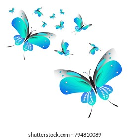 beautiful butterflies, blue,isolated on a white