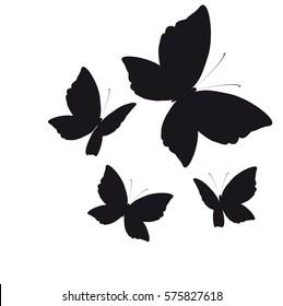 beautiful butterflies, on a white
