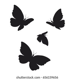 beautiful butterflies silhouette, isolated on a white