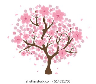 Beautiful cherry blossom tree on white background; made using vector graphics