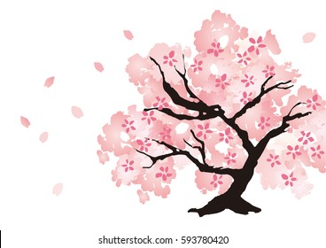 A beautiful cherry tree illustration