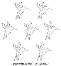 Beautiful colibri silhouette vector illustration