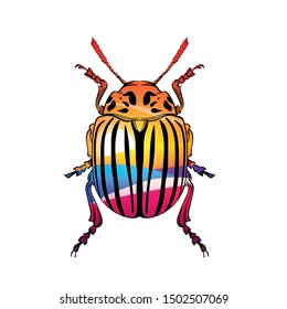Beautiful color Colorado beetle with landscape print on a white background in linear style. Hand-drawn.