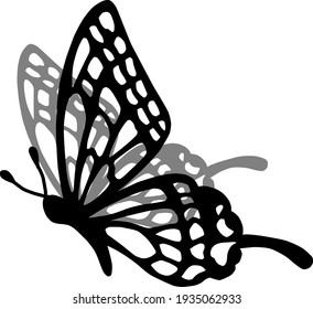 Beautiful and cute butterfly illustration