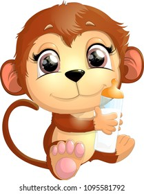 beautiful cute monkey