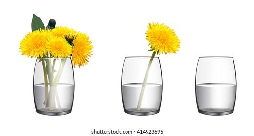 Beautiful Dandelion flower. Realistic vector. Bouquet of dandelions in a glass of water. Vase