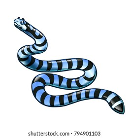 Beautiful, but dangerous striped black with gray a sea serpent separately on a white background. Vector cartoon illustration.
