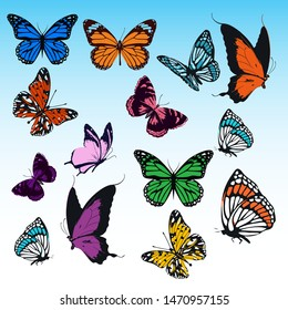 BEAUTIFUL DECORATIVE BUTTERFLY WITH COLORFUL