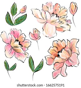 Beautiful delicate flowers on a white background. Such flowers will be a wonderful decoration for any greeting card.
