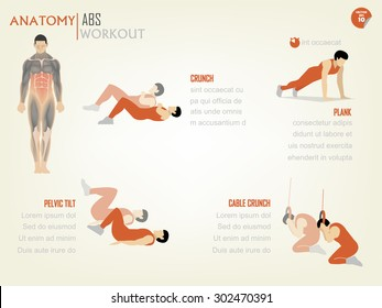 beautiful design info graphic of abdominal ABS core body workout consist of crunch,plank,pelvic tilt and cable crunch