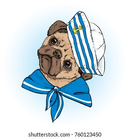 A beautiful dog in sailor clothes. Vector illustration. Animal in clothes and accessories. A sailor in a cap and tie. Purebred puppy.