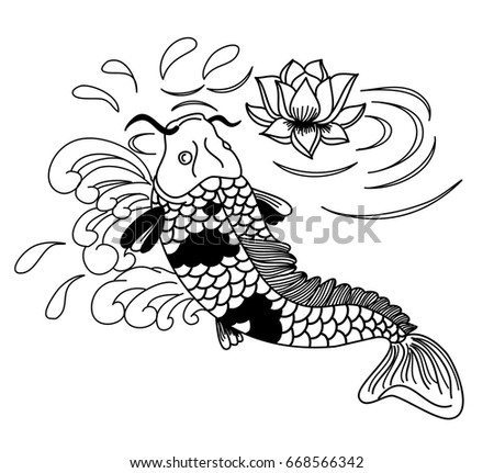 Carp Fish Diagram