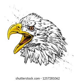 Beautiful eagle on the background of the American flag. Hawk or falcon. Predatory bird. America. Vector illustration for postcard or poster, print for clothes. USA.