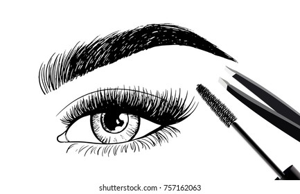 Beautiful eye and eyebrows with set of tools and accessories for care. Brush mascara for eyelashes and tweezers. Vector beauty industry design. Cosmetics logo, label, brand insignia signs template.