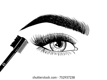 Beautiful eyes and eyebrows with a brush for eyebrows and eyelashes. Logo design of the master on the eyebrows, makeup artist, makeup stylist, master of eyebrows or eyelashes