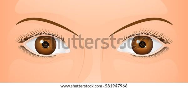 beautiful female eyes, vector illustrations