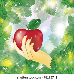Beautiful female hand holding apple .vector illustration