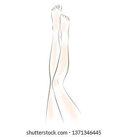 Beautiful Female Legs Drawn in Lines