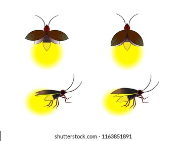 Easy Diagram Of Firefly Wiring Diagrams