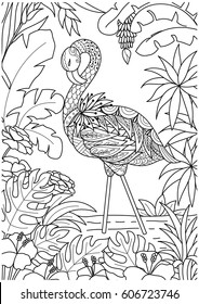 beautiful flamingo summer time coloring 260nw