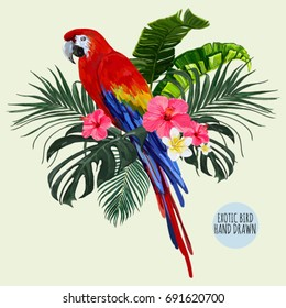 Beautiful floral exotic vector illustration with parrot, tropical leaves, hibiscus. Isolated on white background