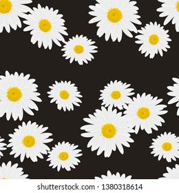 Beautiful floral seamless pattern with daisies on the black background vector