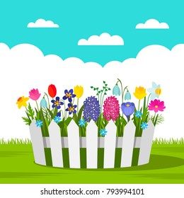 Beautiful flowerbed with spring flowers and a white fence outdoors. concept of garden and gardening. vector illustration isolated illustration