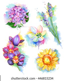 Beautiful flowers, watercolor painting, vector icon set.