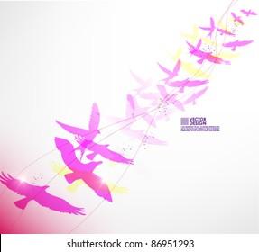beautiful freedom birds vector background design