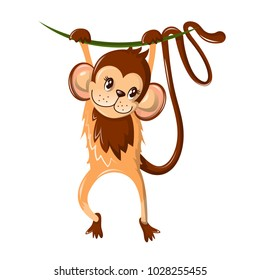 Beautiful funny cartoon monkey, hung on a tree branch. Colorful little monkey, a representative of primates, living in the subtropics and tropics. An animal from the zoo. Vector illustration.