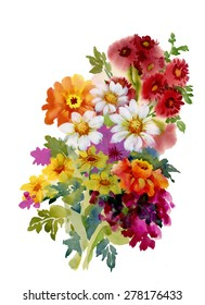 Beautiful garden summer flowers, watercolor vector illustration