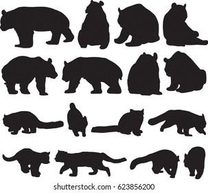 Beautiful giant panda and red panda or lesser panda silhouette contour