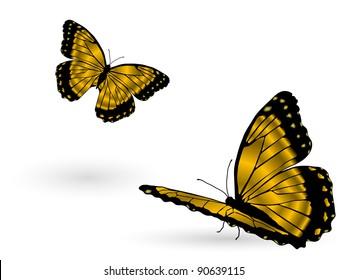 Beautiful golden butterflies on white background