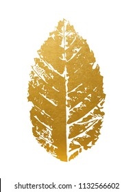 Beautiful Golden Leave