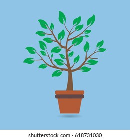 Beautiful Green tree over blur background