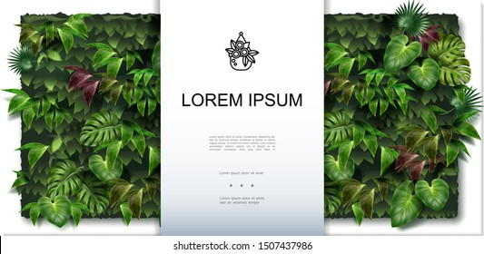 Beautiful green wall background with different tropical leaves in realistic style vector illustration