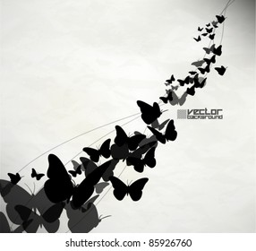beautiful grunge butterfly vector background