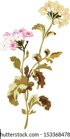 Beautiful hand drawn colour full floral motif