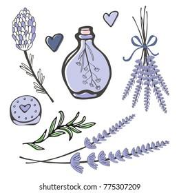 Beautiful hand drawn lavender set
