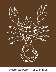 Beautiful hand drawn linear illustration with white scorpion silhouette on the brown background
