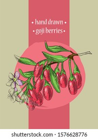 Beautiful hand drawn vector color illustration with goji berries on a branch. Superfood. Detailed trendy style images. Modern sketch elements collection for packaging design.