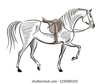Beautiful horse in motion with saddle and bridle. English equestrian sport fox hunting autumn style. Hand drawing art. Vector sketch and stroke line illustration on white.