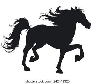 Beautiful horse. Silhouette.